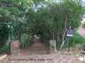 1er-festival-de-la-cultura-guane--2018-baricharavive-27