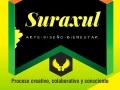suraxul-7a-edicion-el-centro-con-las-salas-abiertas-bucaramanga-2017