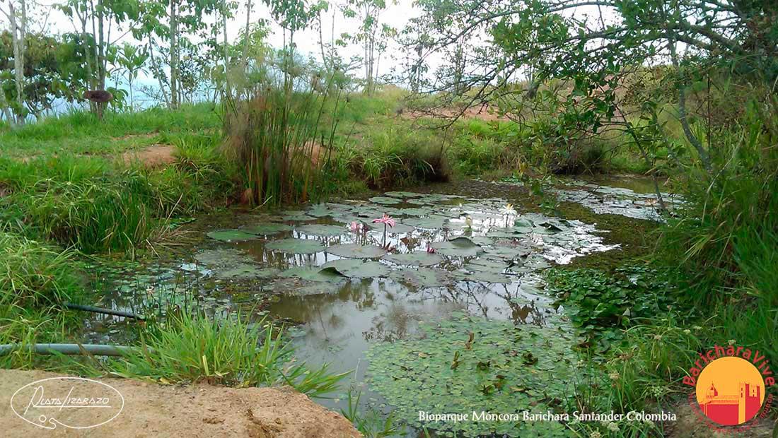 lagobioparquemoncora2