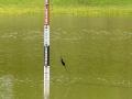 11-estado-represa-el-comun-sabado-5-de-junio-de-2021