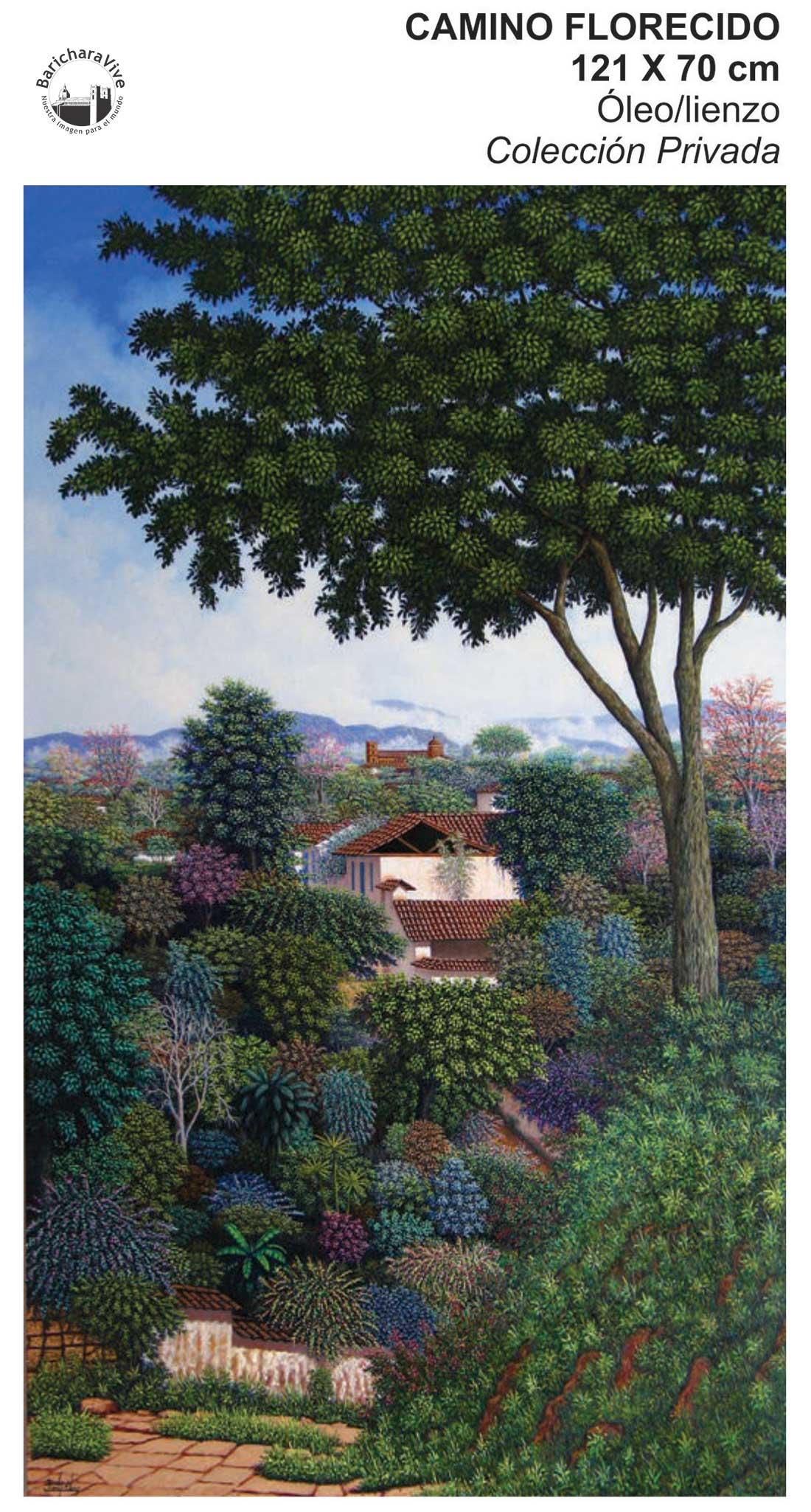 5-camino-florecido-exposicion-barichara-carlos-gonzalez