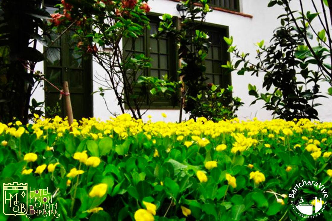 6-vista-habitacion-superior-hotel-mision-santa-barbara-baricharavive