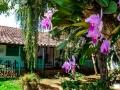 9-vista-a-junior-suites-hotel-mision-santa-barbara-baricharavive
