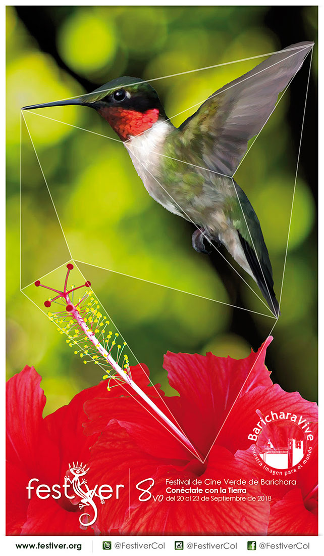 afiche-8vo-festial-de-cine-verde-de-barichara-festiver