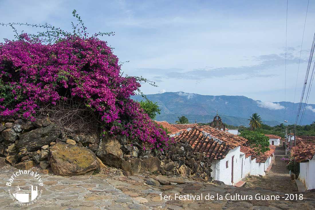 1er-festival-de-la-cultura-guane--2018-baricharavive-128