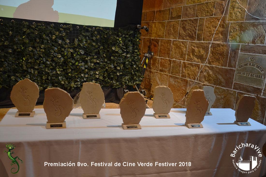 premiacion-festiver-2019-baricharavive-1