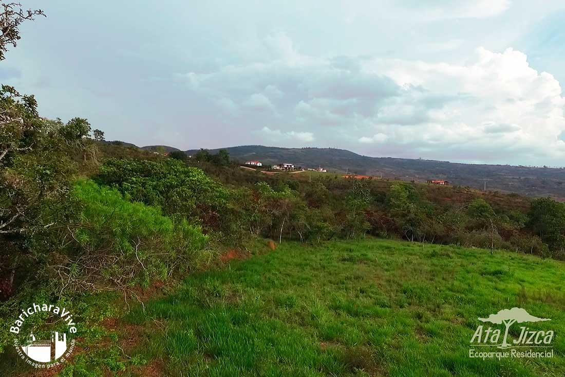 atajizcaecoparque-residencial-baricharavegetacion