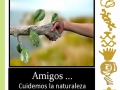ecosimbolos-reinaldo-alfonso-baricharavive-2