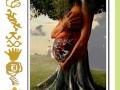 ecosimbolos-reinaldo-alfonso-baricharavive-3