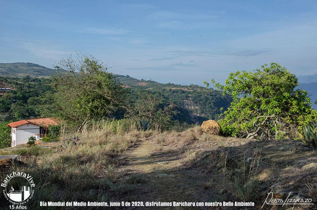 111-dia-mundial-del-medio-ambiente-barichara-5-de-junio-2020