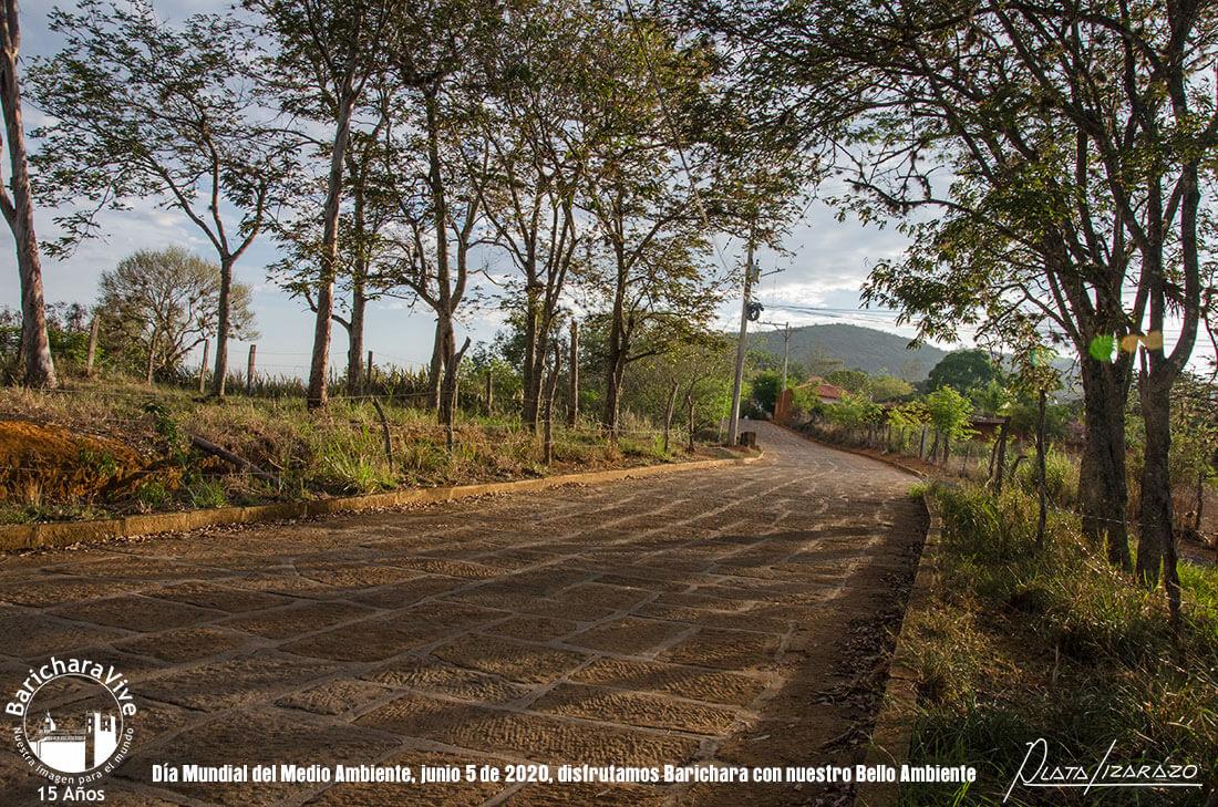 39-dia-mundial-del-medio-ambiente-barichara-5-de-junio-2020