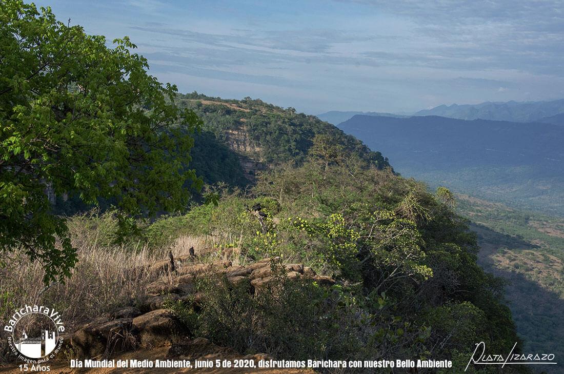 85-dia-mundial-del-medio-ambiente-barichara-5-de-junio-2020