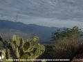67-dia-mundial-del-medio-ambiente-barichara-5-de-junio-2020