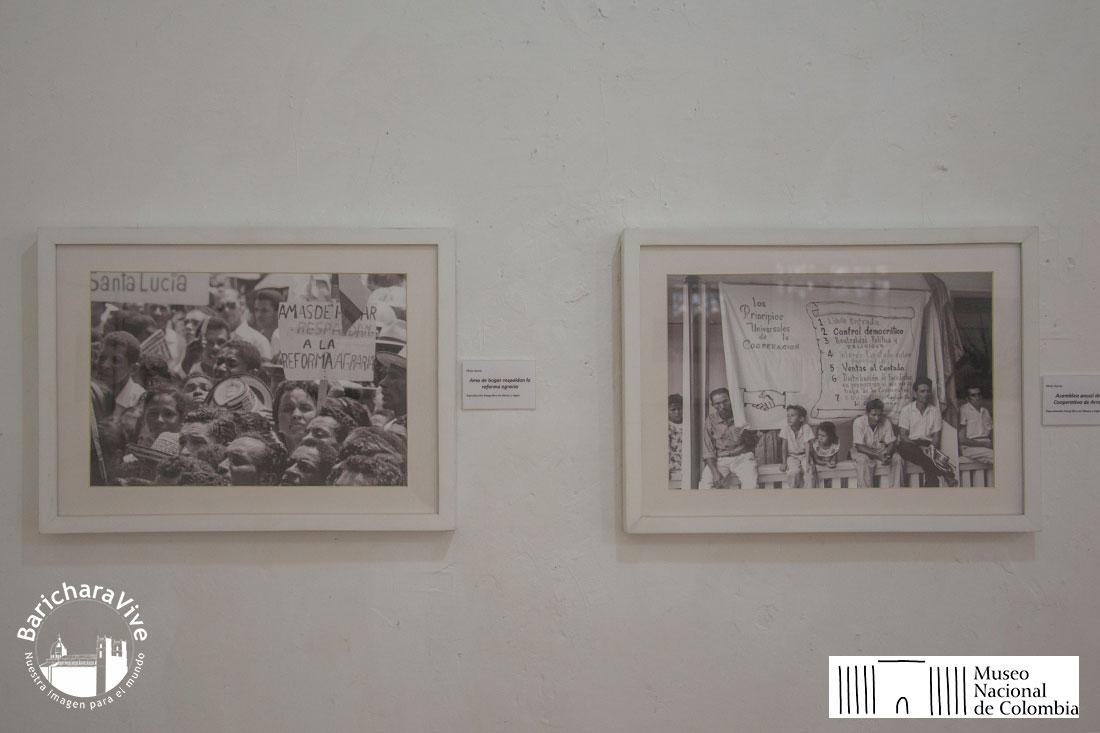 46-exposicion-campo-revelado-casa-de-la-cultura-baricharavive