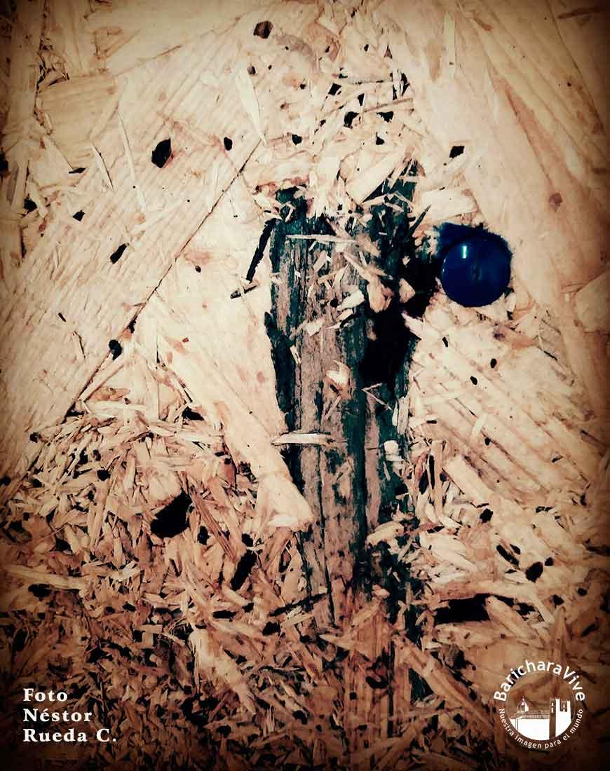 foto-nestor-rueda-expo-casa-del-libro-bucaramanga-1