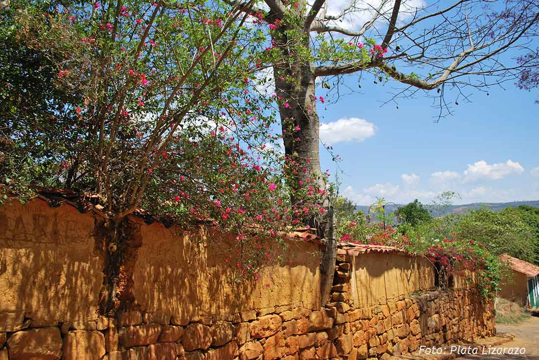 16tapiapisadabarichara-fotoplatalizarazo-.jpg