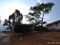 8maleconmiradorbarichara-fotoplatalizarazo.jpg