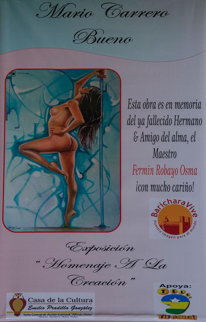 exposicion-homenaje-a-la-creacion-baricharavive-16