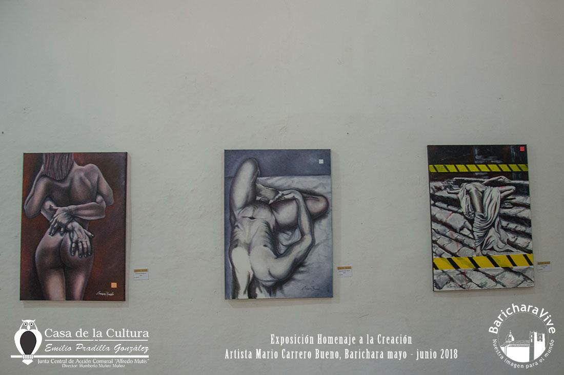 exposicion-homenaje-a-la-creacion-baricharavive-5