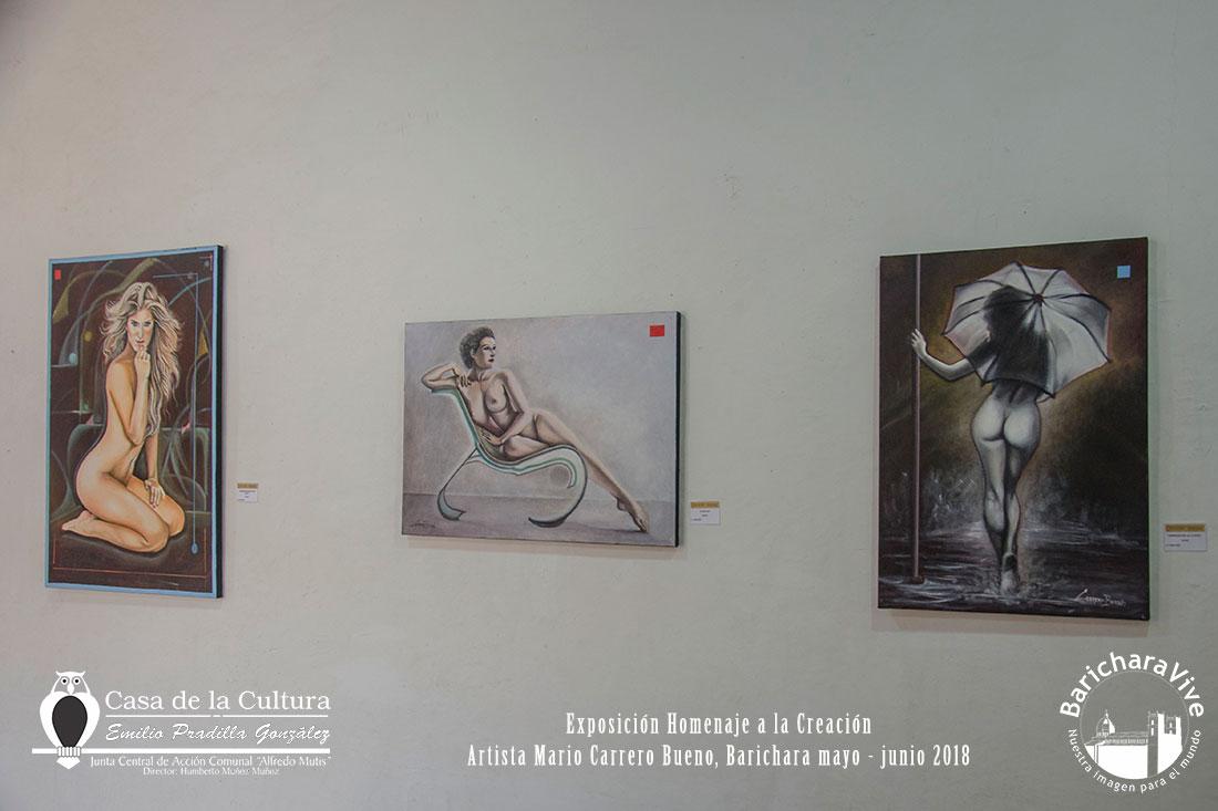 exposicion-homenaje-a-la-creacion-baricharavive-6