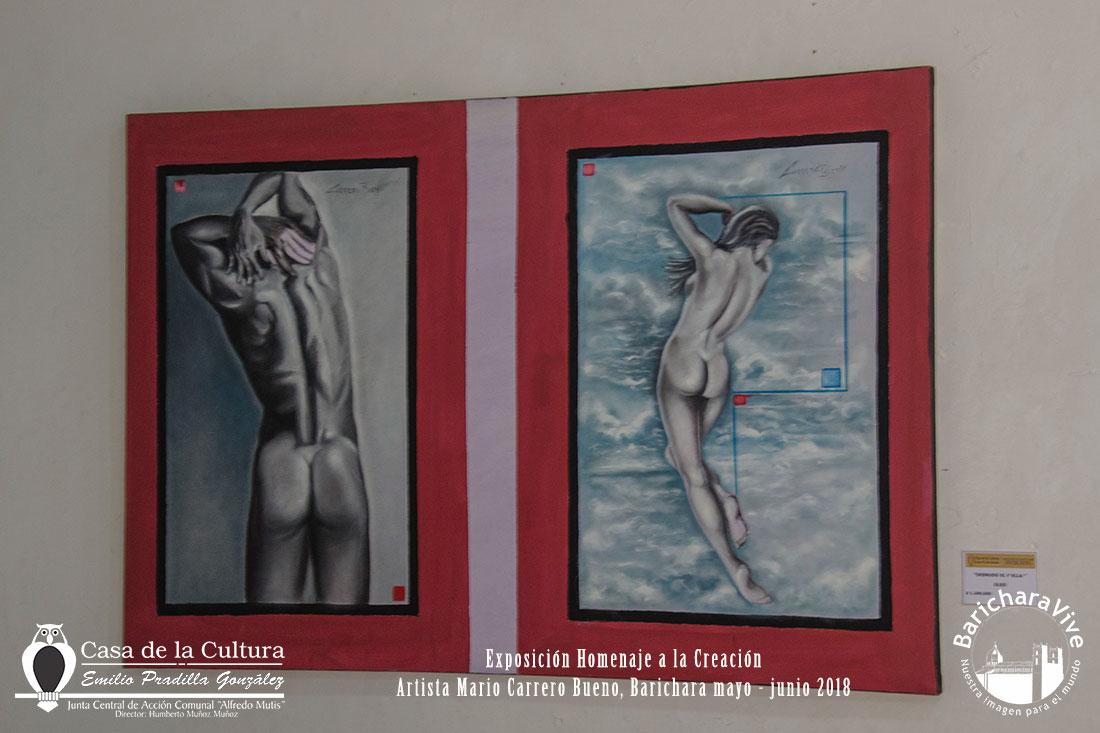 exposicion-homenaje-a-la-creacion-baricharavive-8